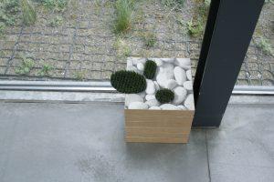 stones of the garden